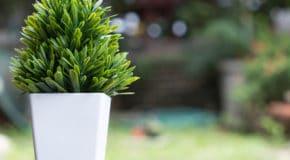 Décorer votre maison avec des plantes artificielles
