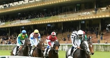 Resultat Quinté Paris Longchamp 25 octobre 2020 Prix Major Fridolin