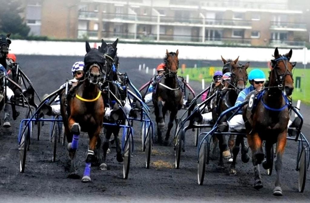 Resultat Quinté Bordeaux 10 Novembre 2020 Grand Prix Dynavena Maisagri