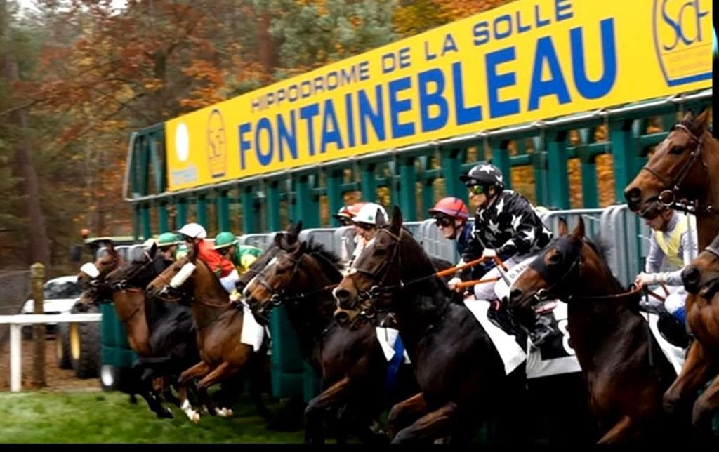 Resultat Quinté Fontainebleau 19 novembre 2020